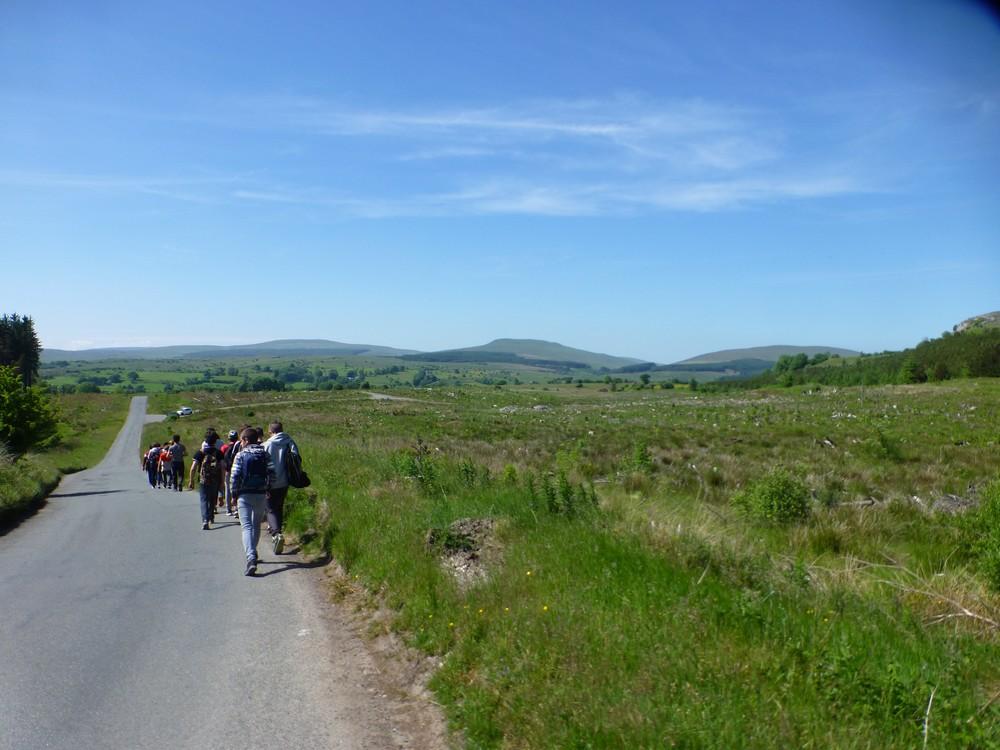 Pays de Galles 6 juin Whales1